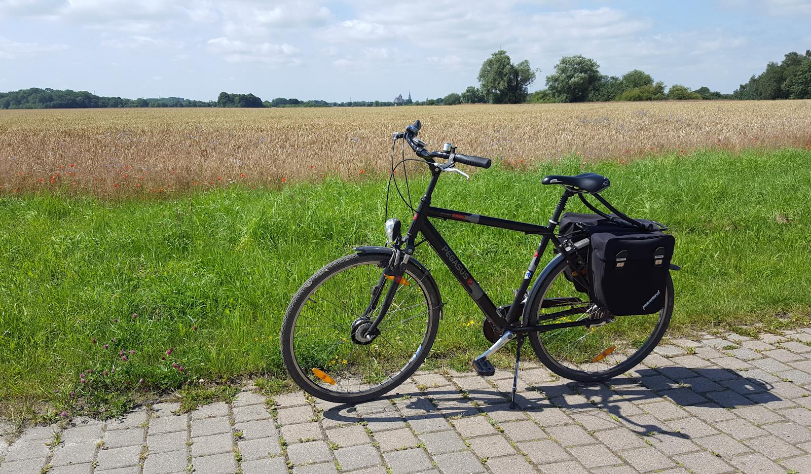 Am Feld - Blick auf Greifswald