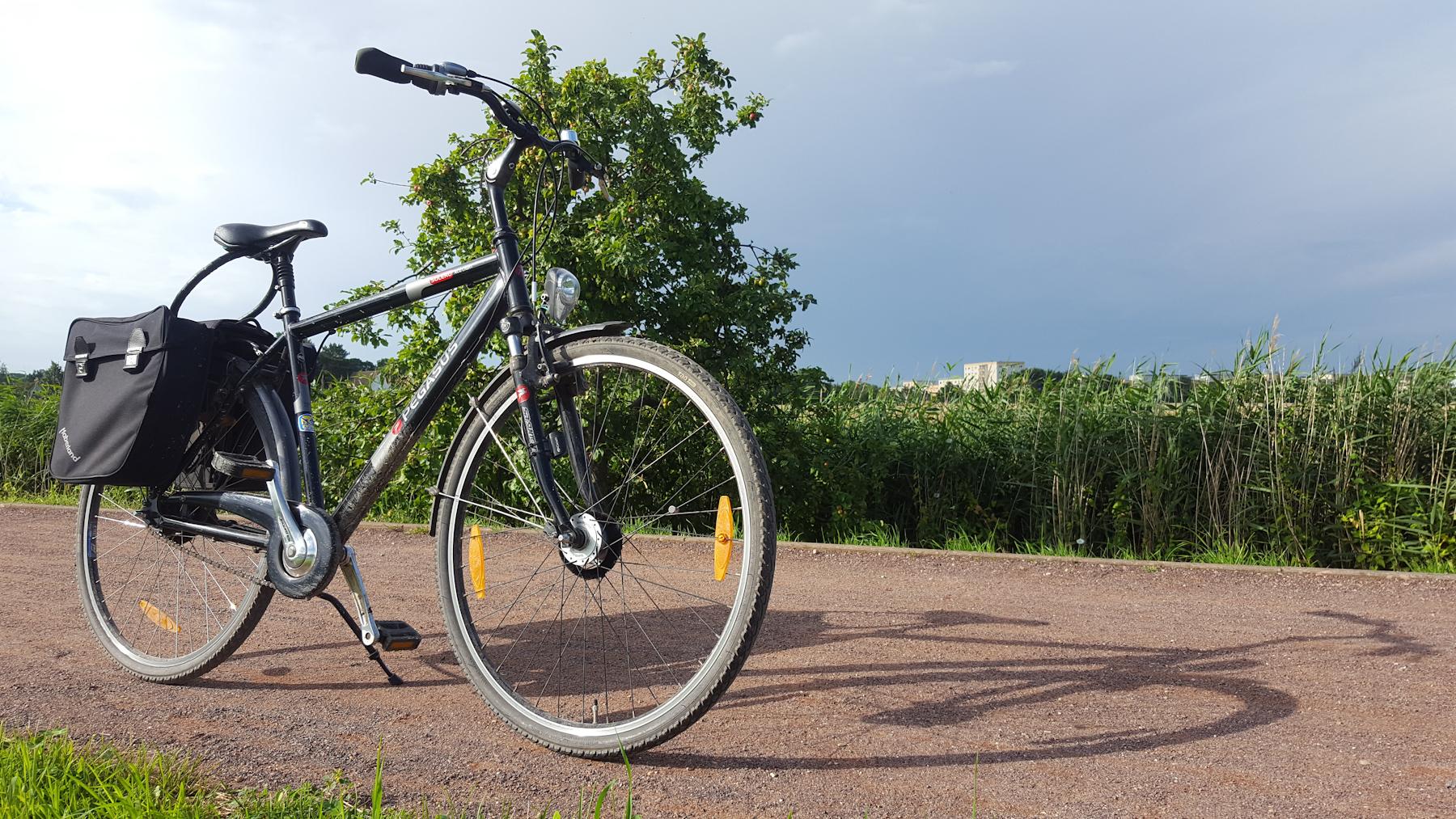 mit dem Fahrrad auf dem Treidelpfad in Greifswald