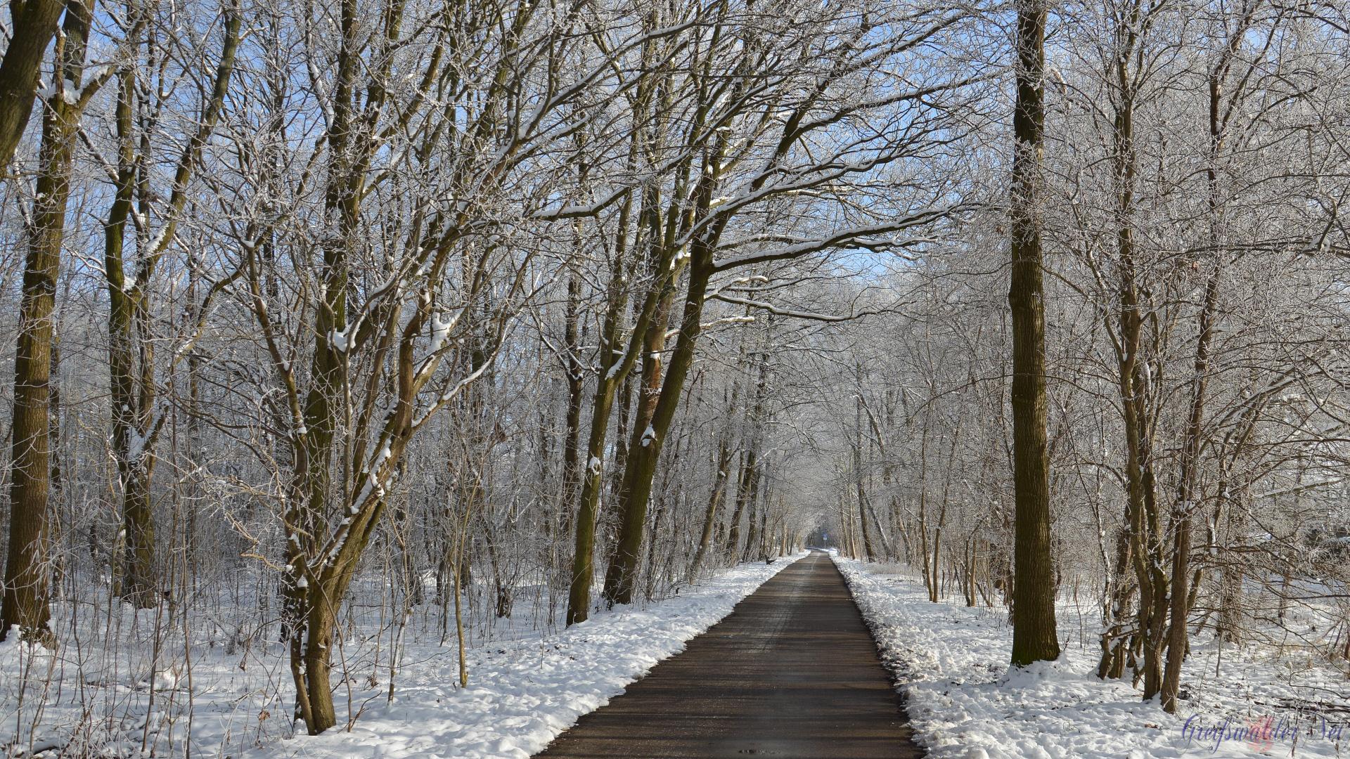 Winterstimmung in der Pappelallee