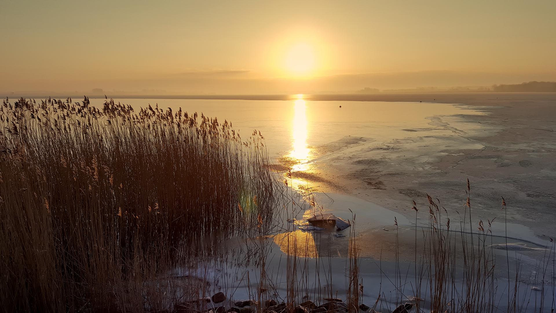 Wintersonne an der Dänischen Wiek in Greifswald-Wieck
