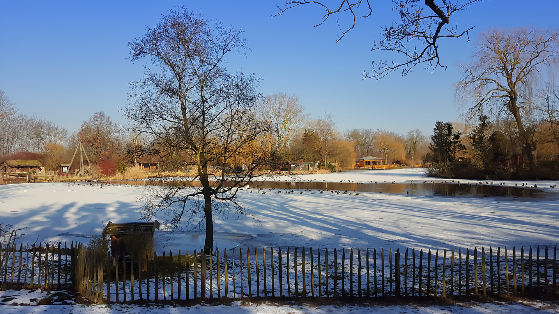 Winter im Tierpark Greifswald
