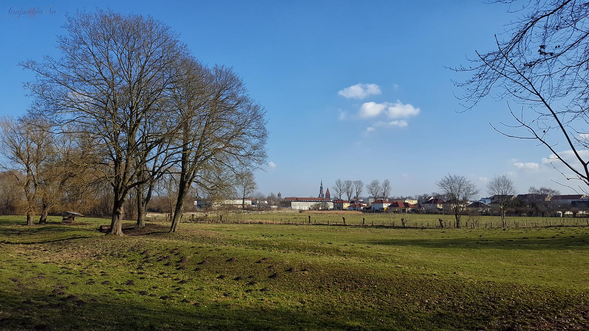 Caspar-David-Friedrich-Bildweg – Wiesen bei Greifswald