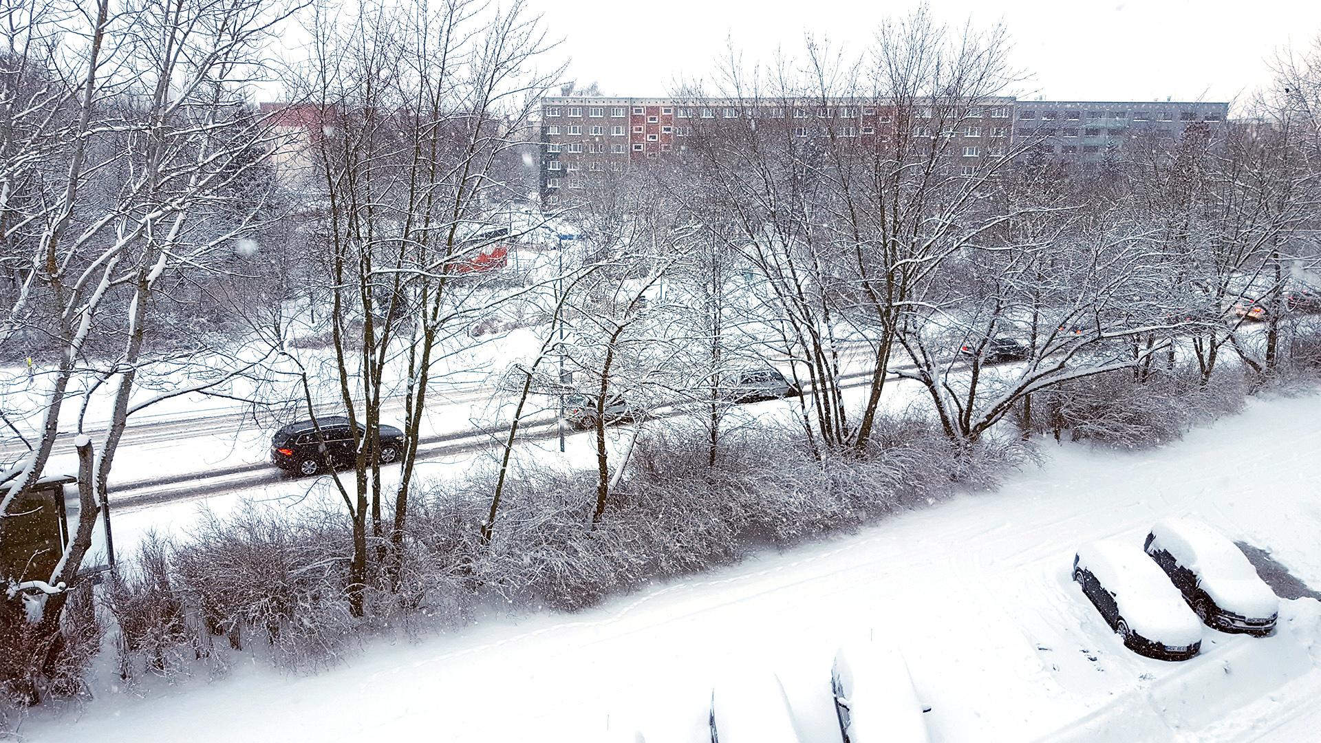Schneeschauer in Greifswald