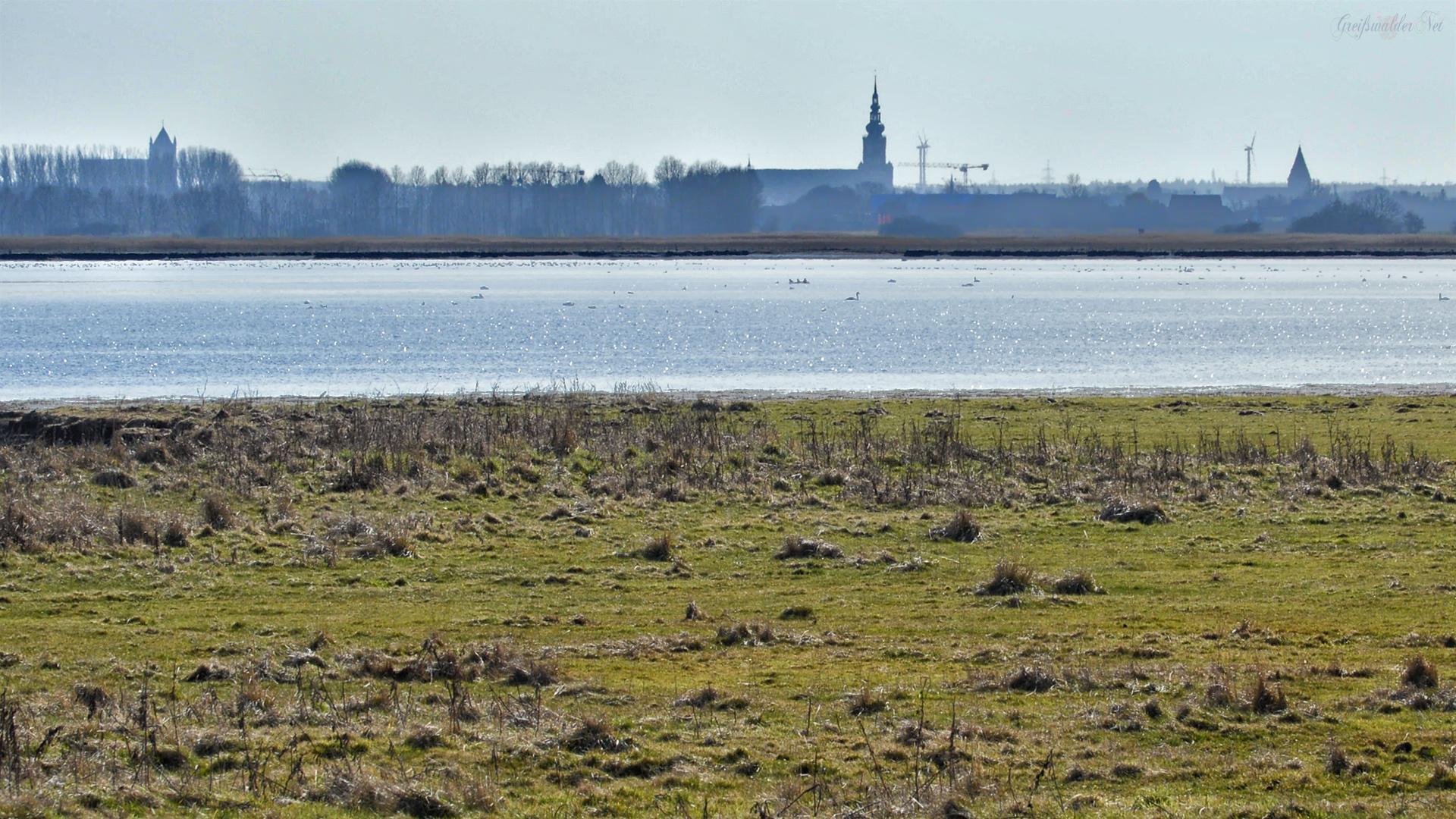 aus der Ferne - Blick auf Greifswald