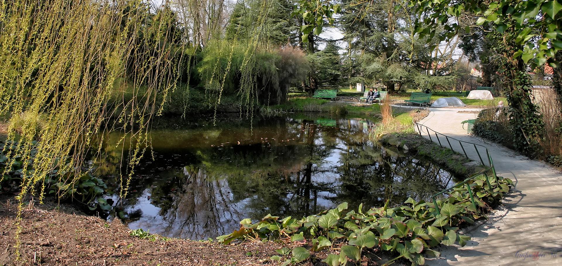 Arboretum Greifswald