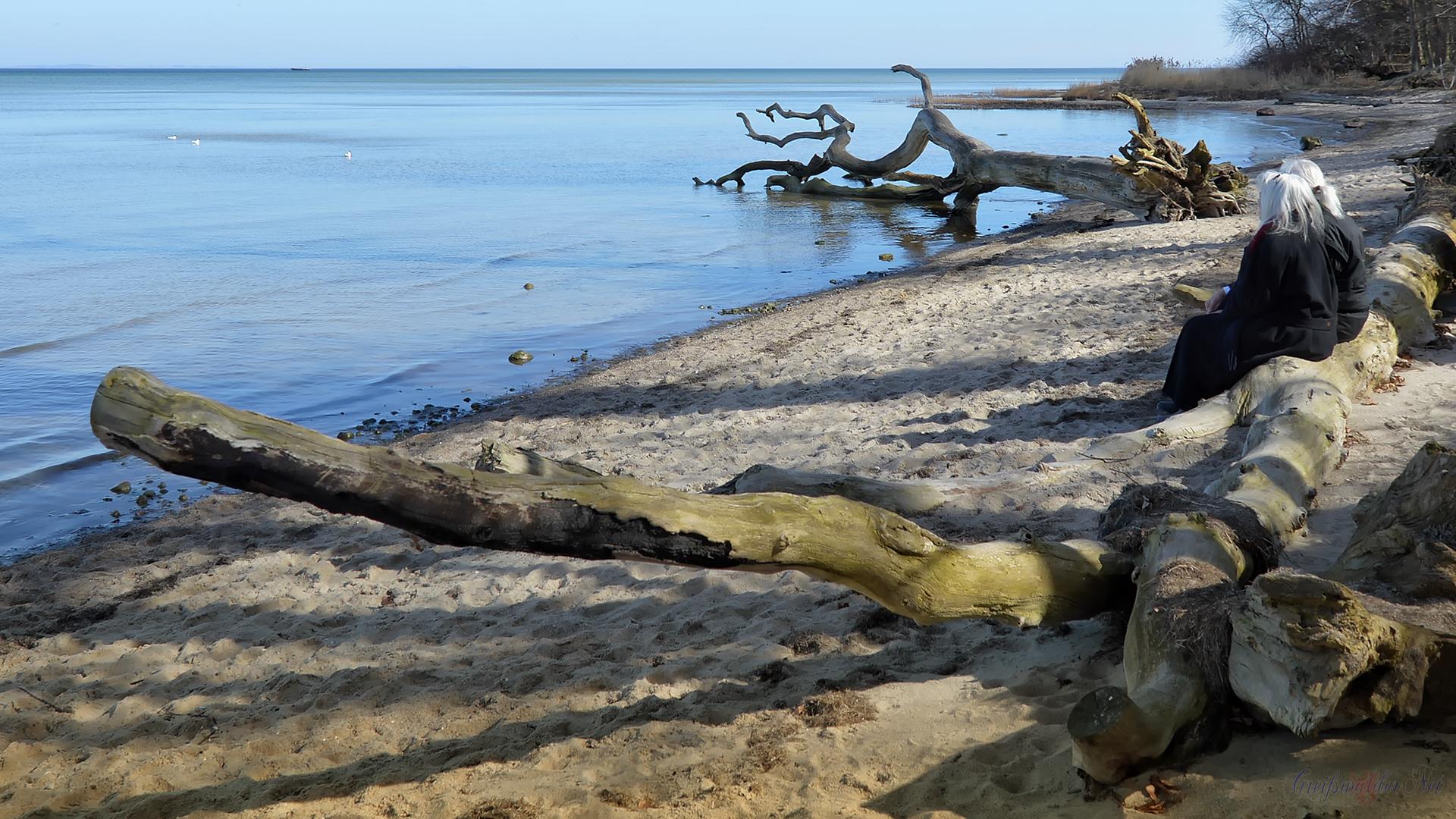 Romantischer Strand am Greifswalder Bodden