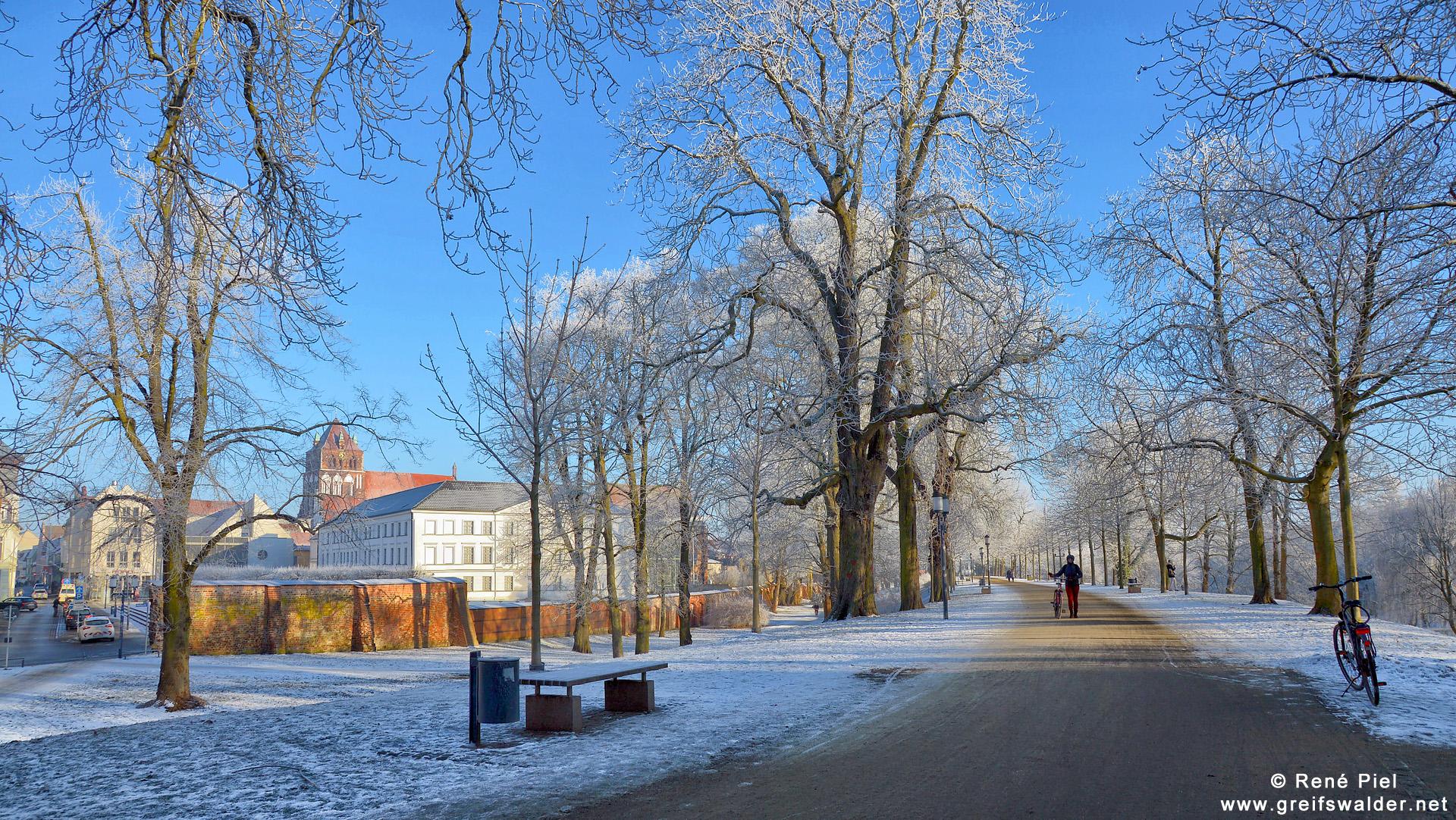 Winterstimmung in Greifswald