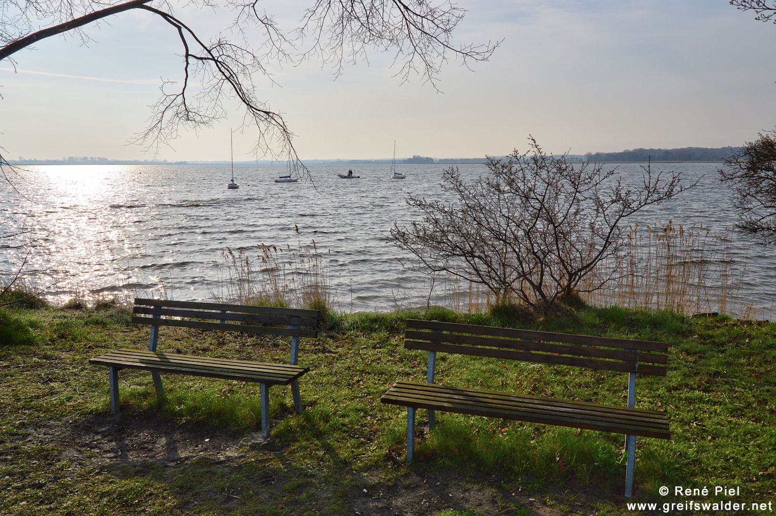 Frühling an der Dänischen Wiek in Greifswald-Wieck