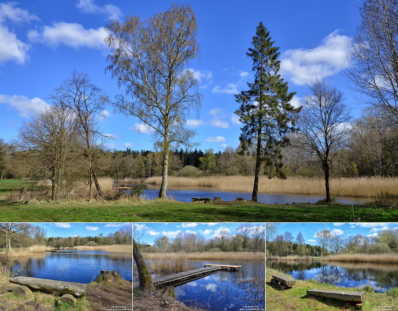 See im Wald bei Weitenhagen