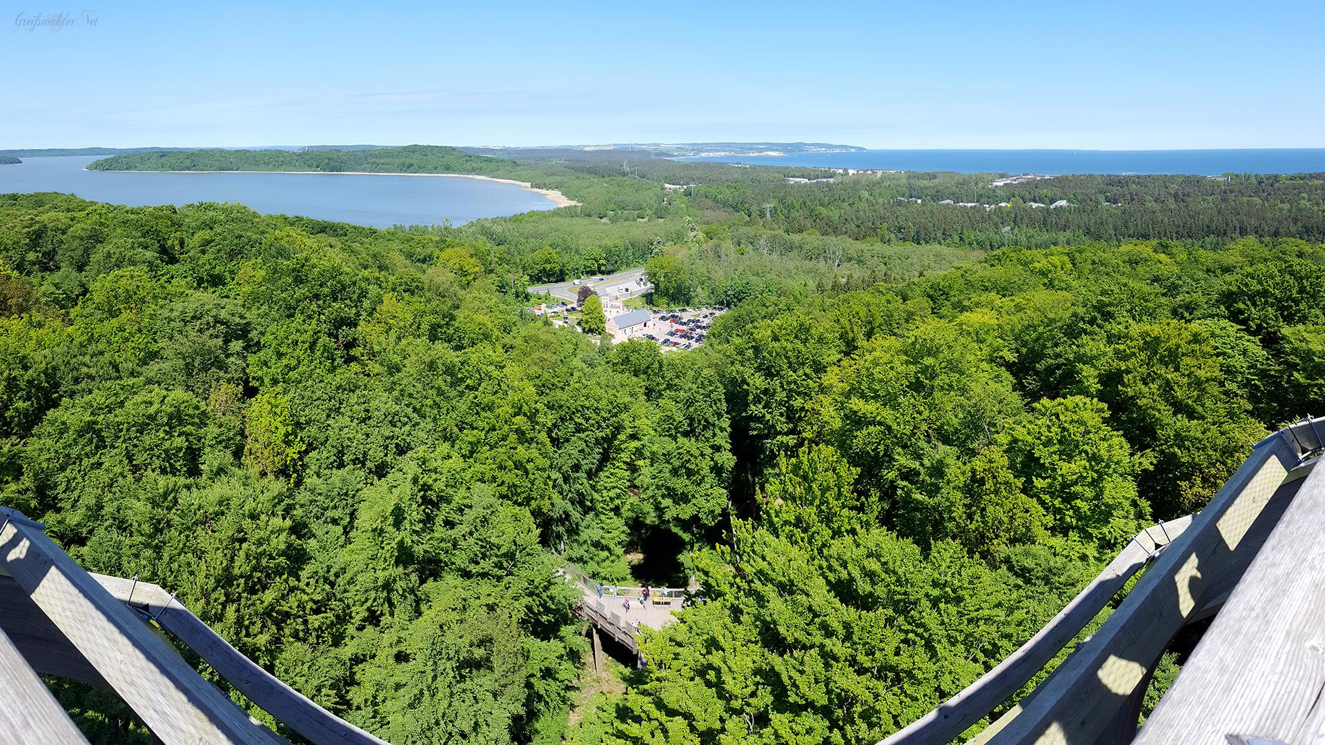 Baumwipfelpfad auf der Insel Rügen – Naturerbe Zentrum Rügen