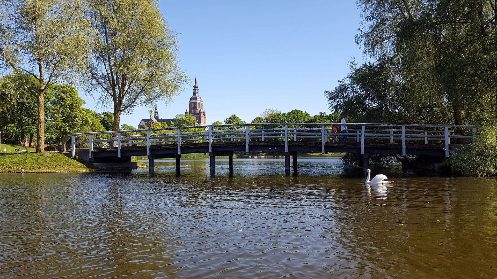 Tretbootfahren auf dem Knieperteich in Stralsund