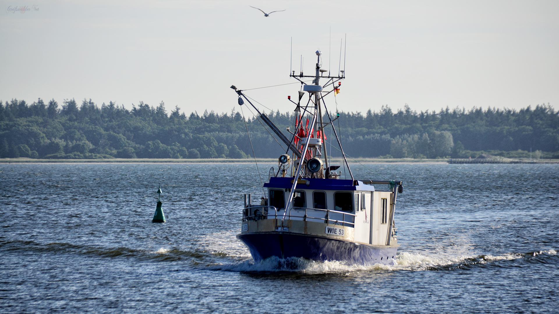 Dänische Wiek - Fischkutter
