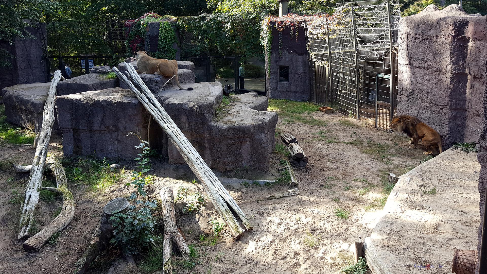 Tierpark Ueckermünde