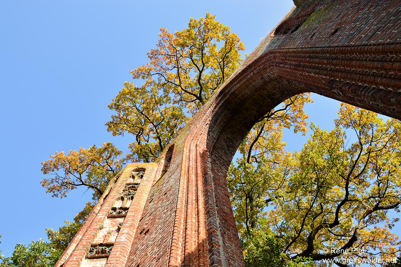 Herbststimmung in der Klosterruine Eldena