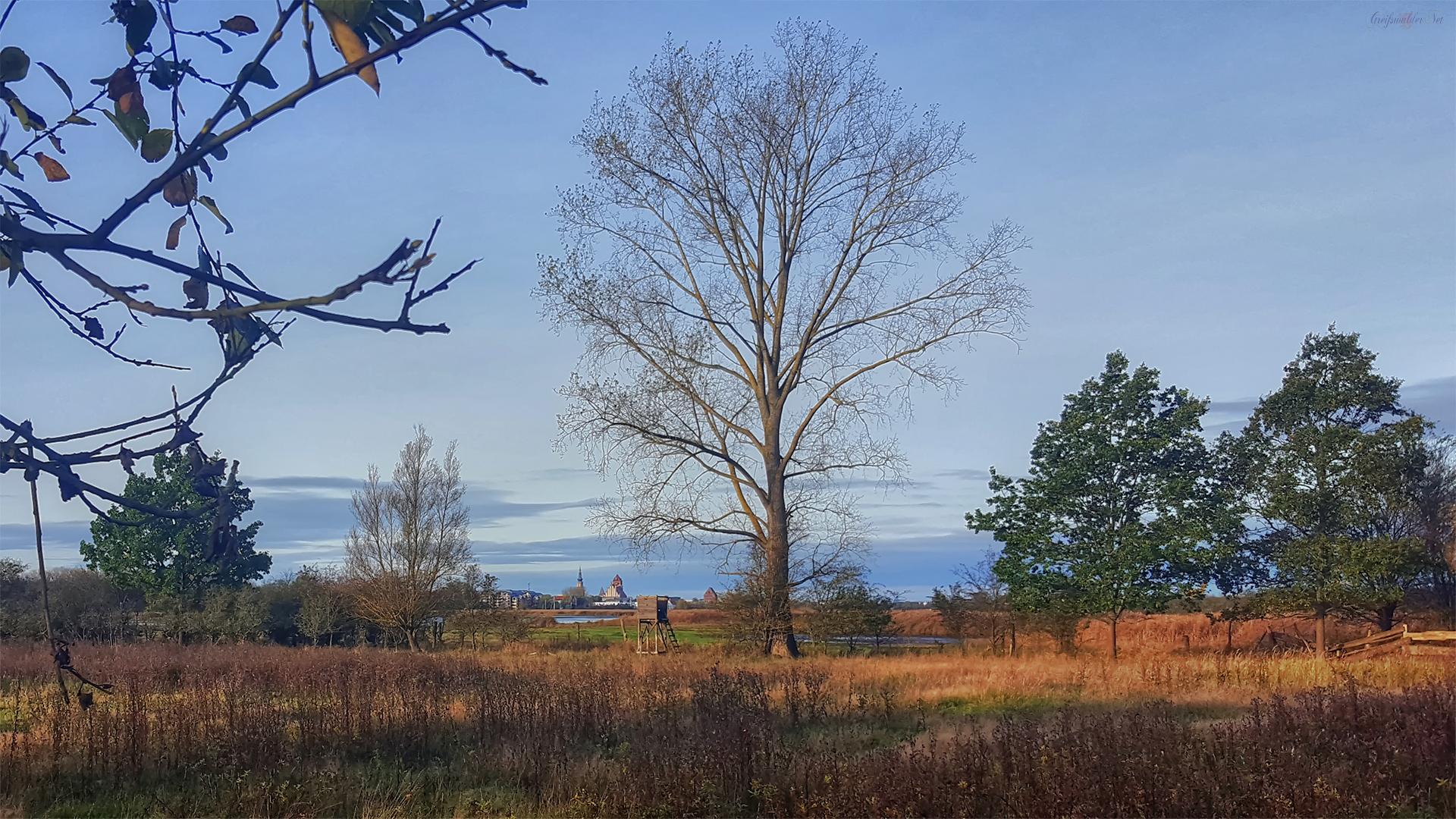 Sonniger Herbst - Blick auf Greifswald