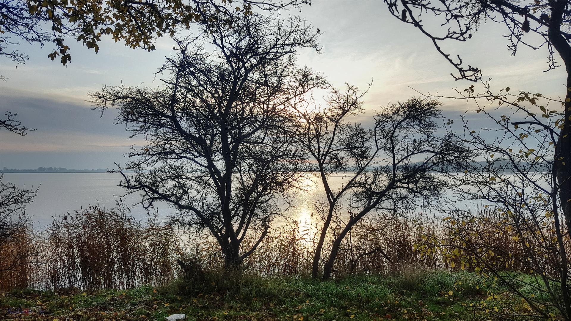 Herbststimmung an der Dänischen Wiek in Greifswald-Wieck
