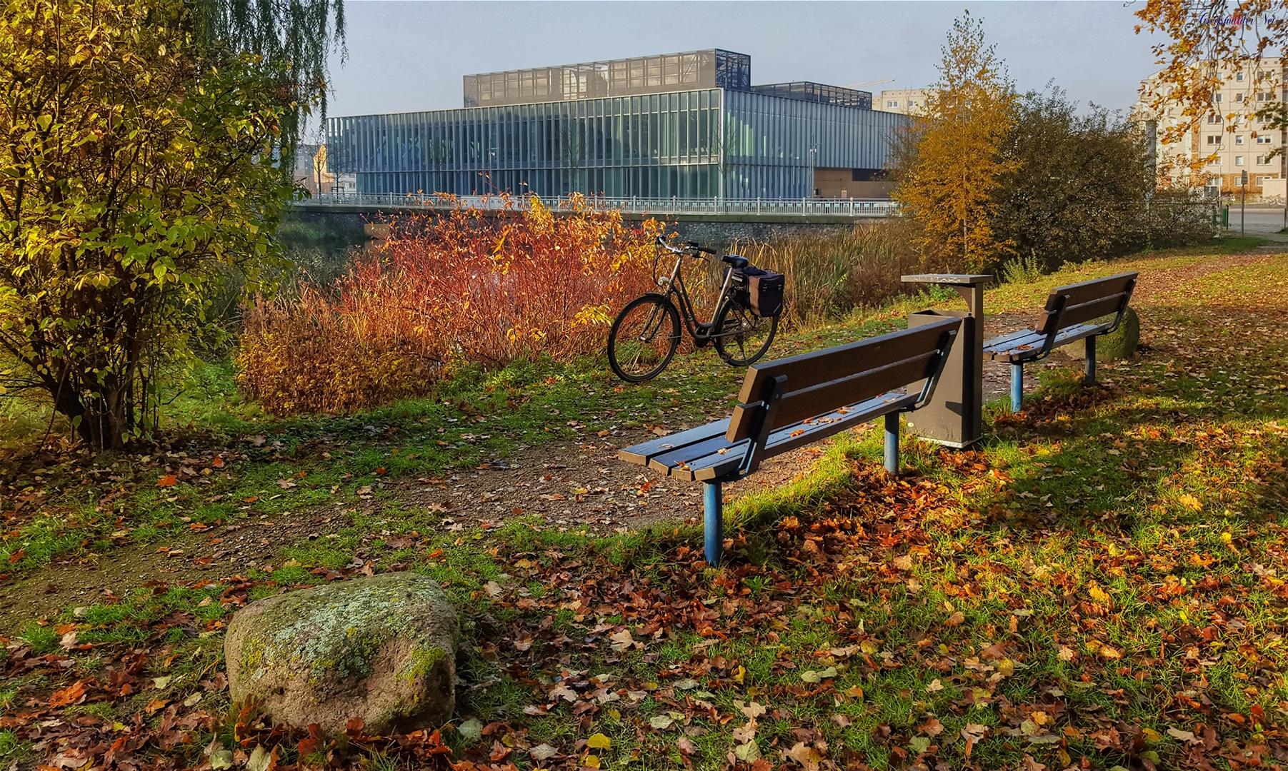 Herbststimmung am Berthold-Beitz-Platz in Greifswald