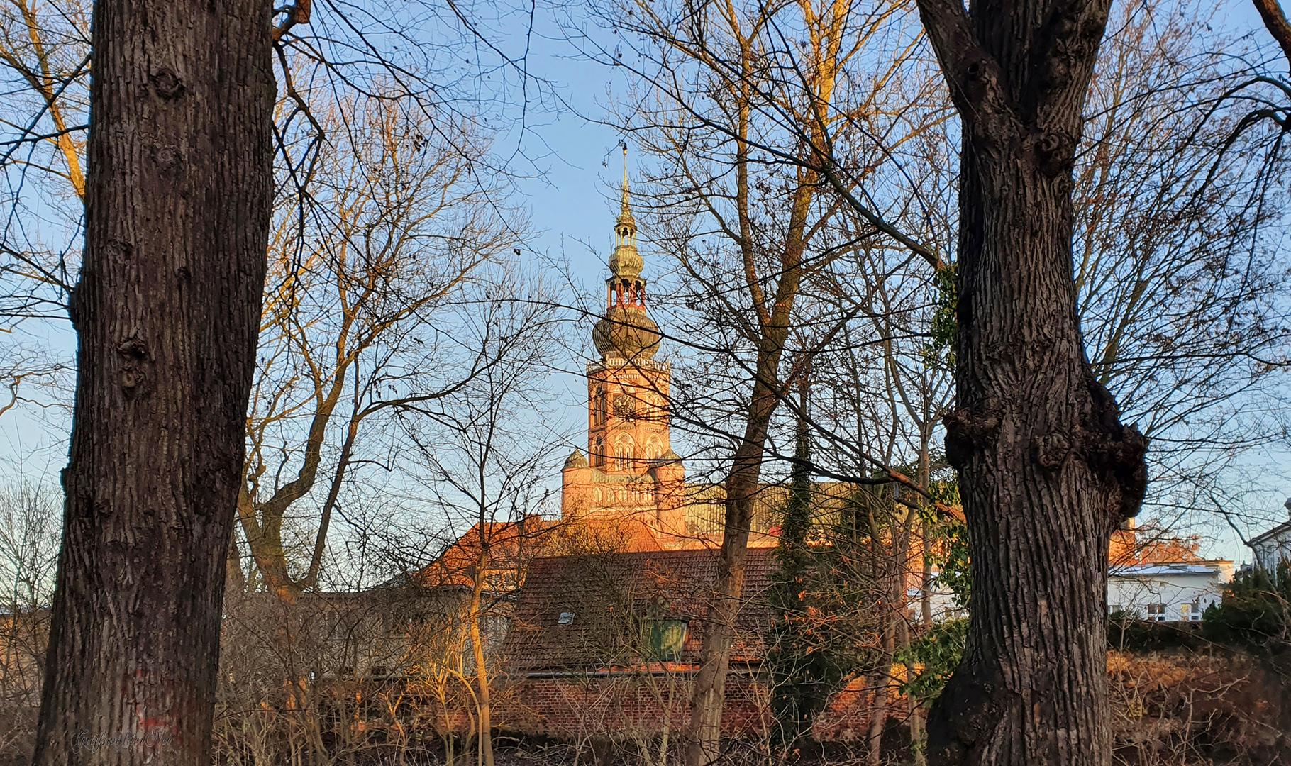 Blick zum Dom St. Nikolai in Greifswald