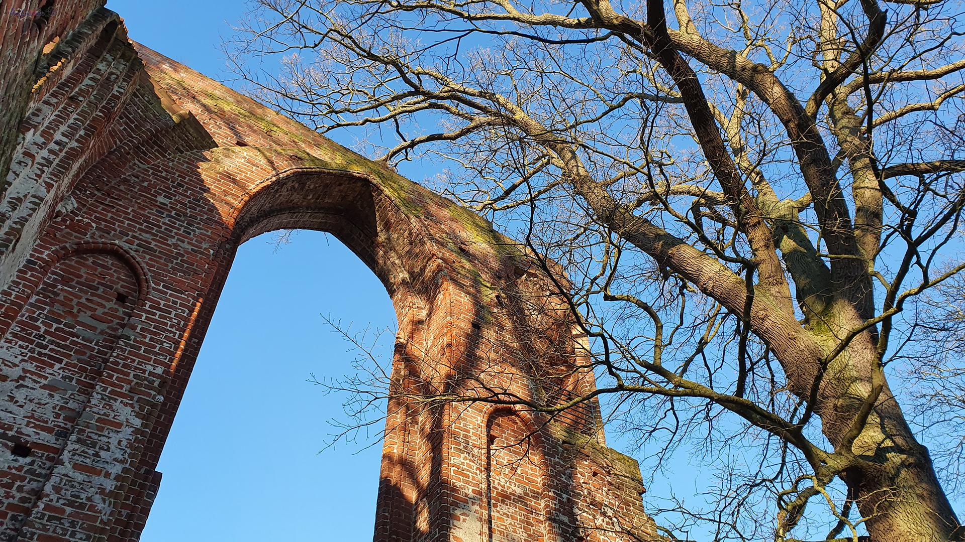 Sonnenschein in der Klosterruine Eldena
