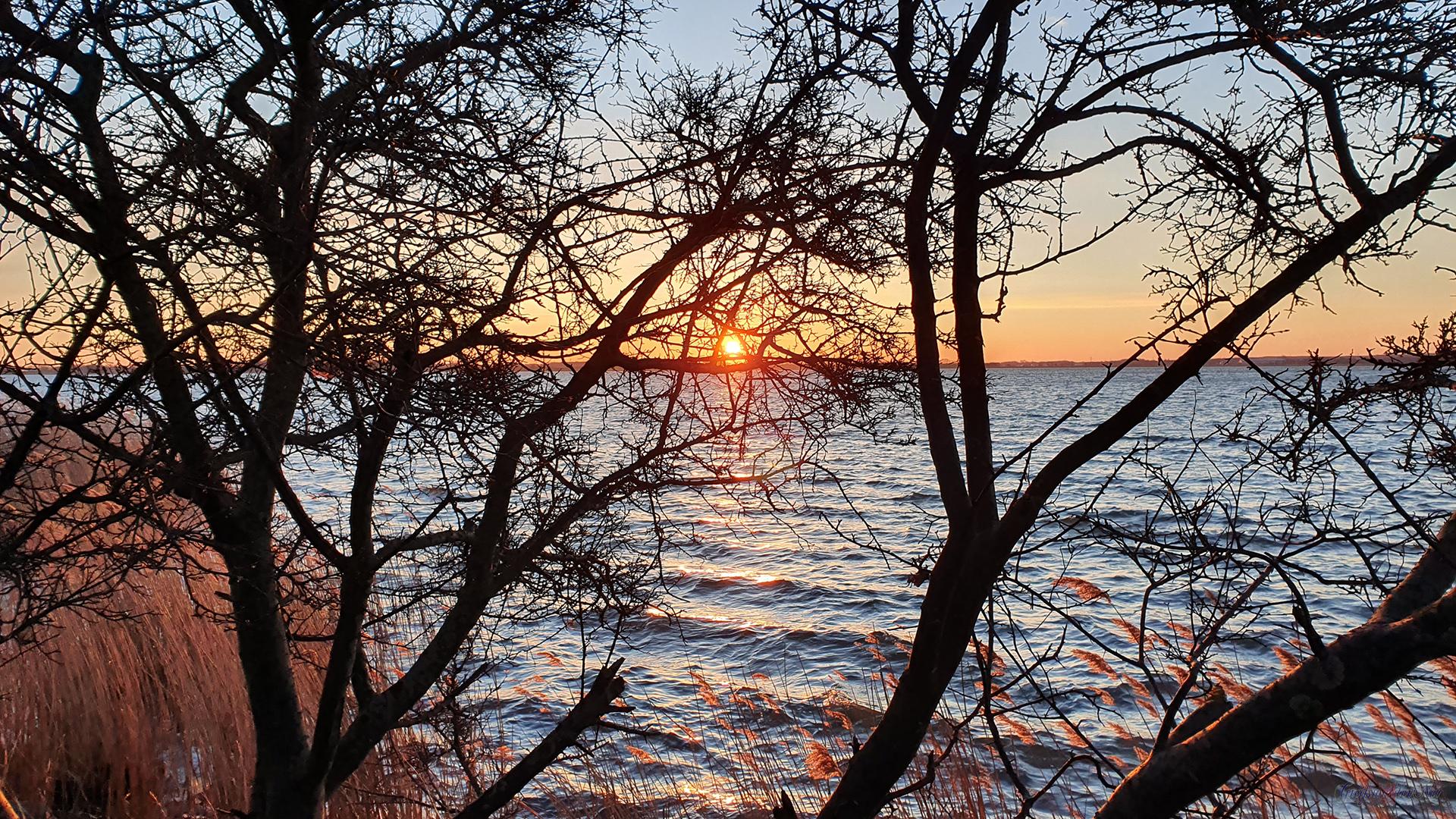 Sonnenaufgang an der Dänischen Wiek in Greifswald-Wieck