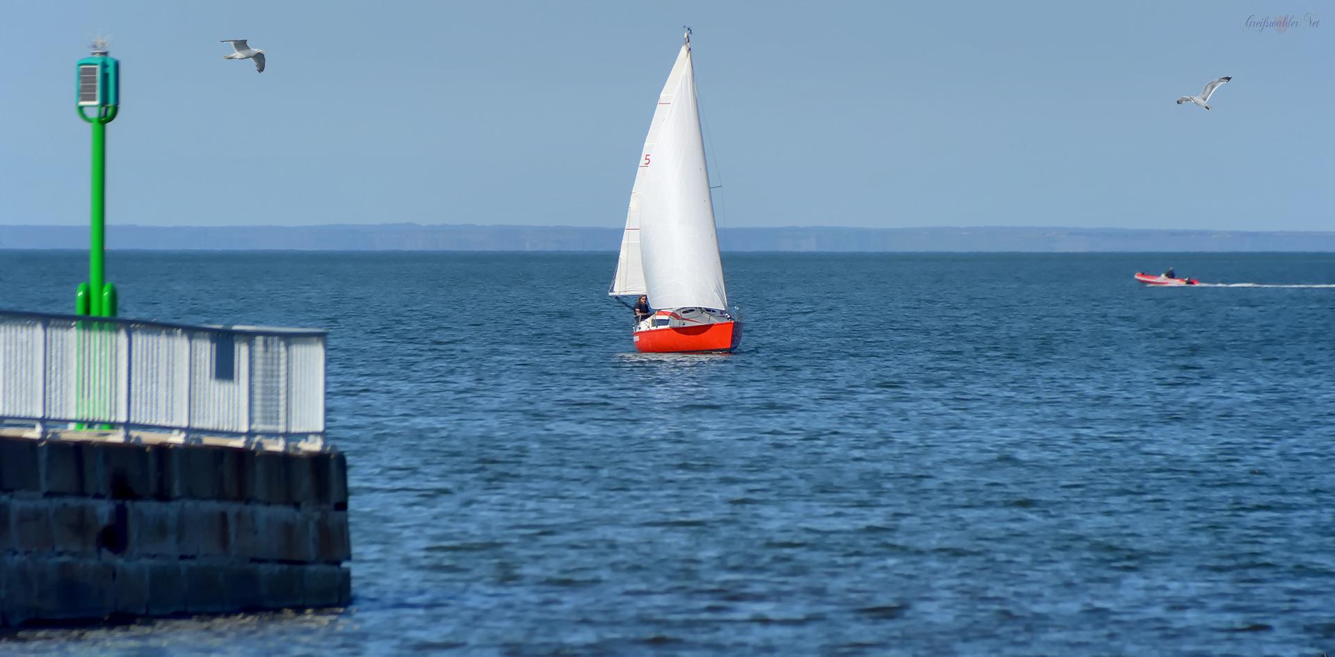 Segelboot auf der Dänischen Wiek