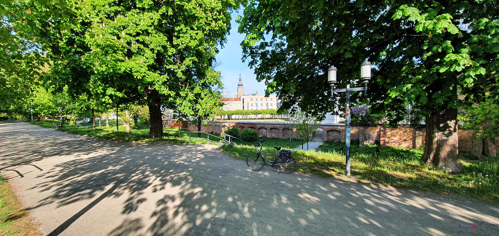 Auf dem Wall in Greifswald mit Blick zum Dom St. Nikolai