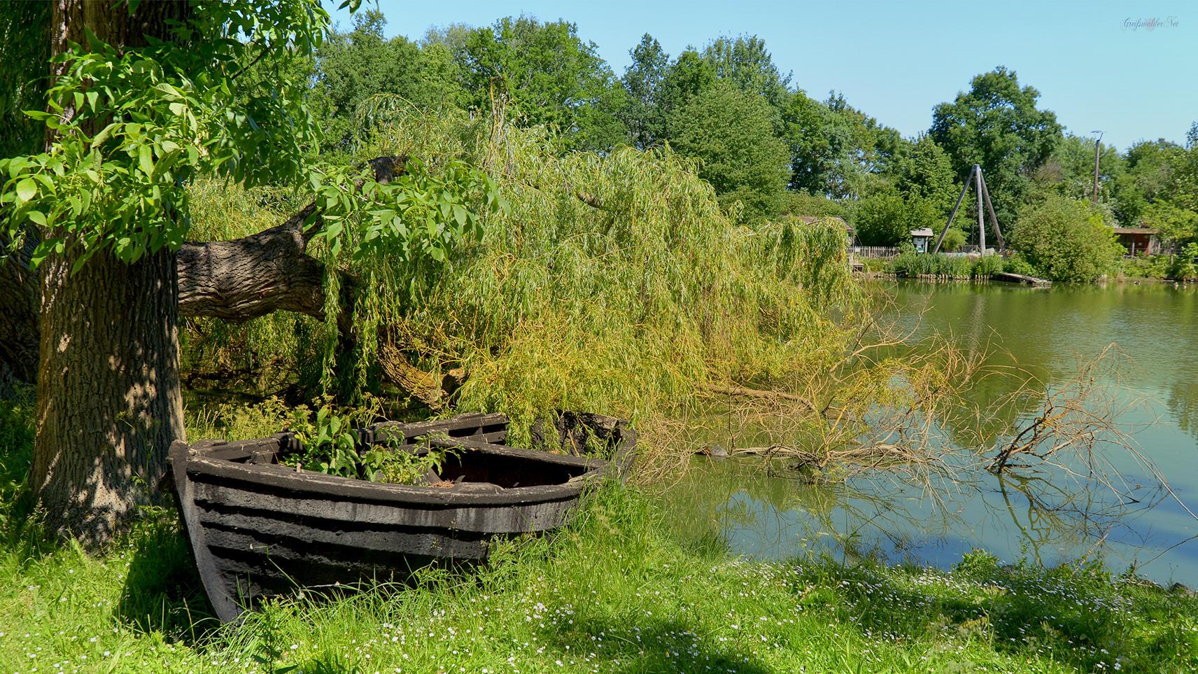 Natur im Tierpark Greifswald