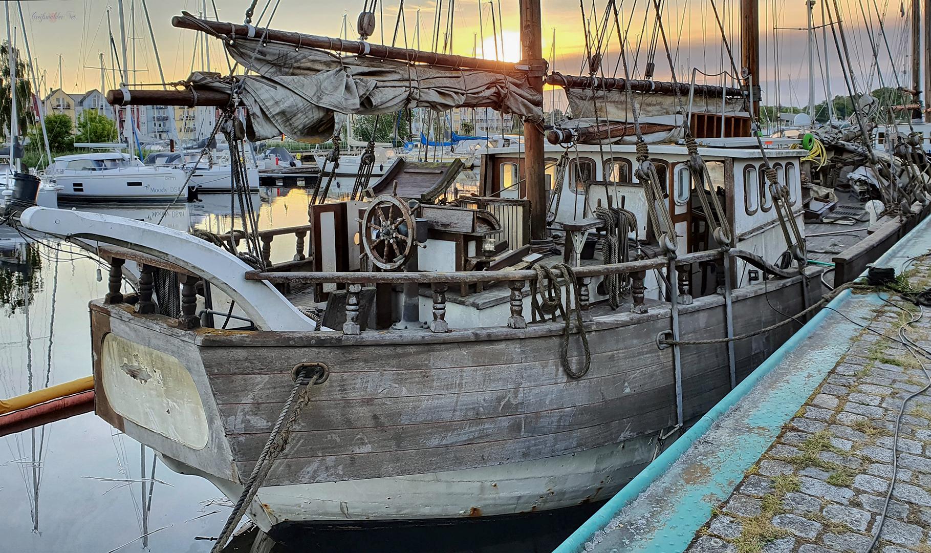 """Holzkutter """"Antigua"""" nach der Bergung im Museumshafen Greifswald"""