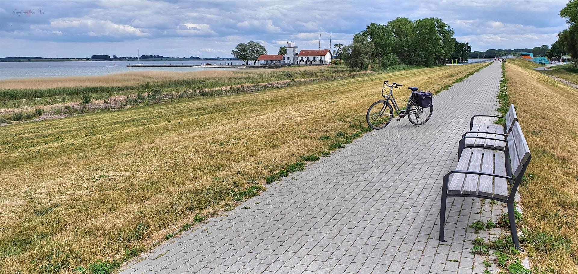 Nachmittags auf dem Deich zwischen Greifswald-Wieck und Ladebow