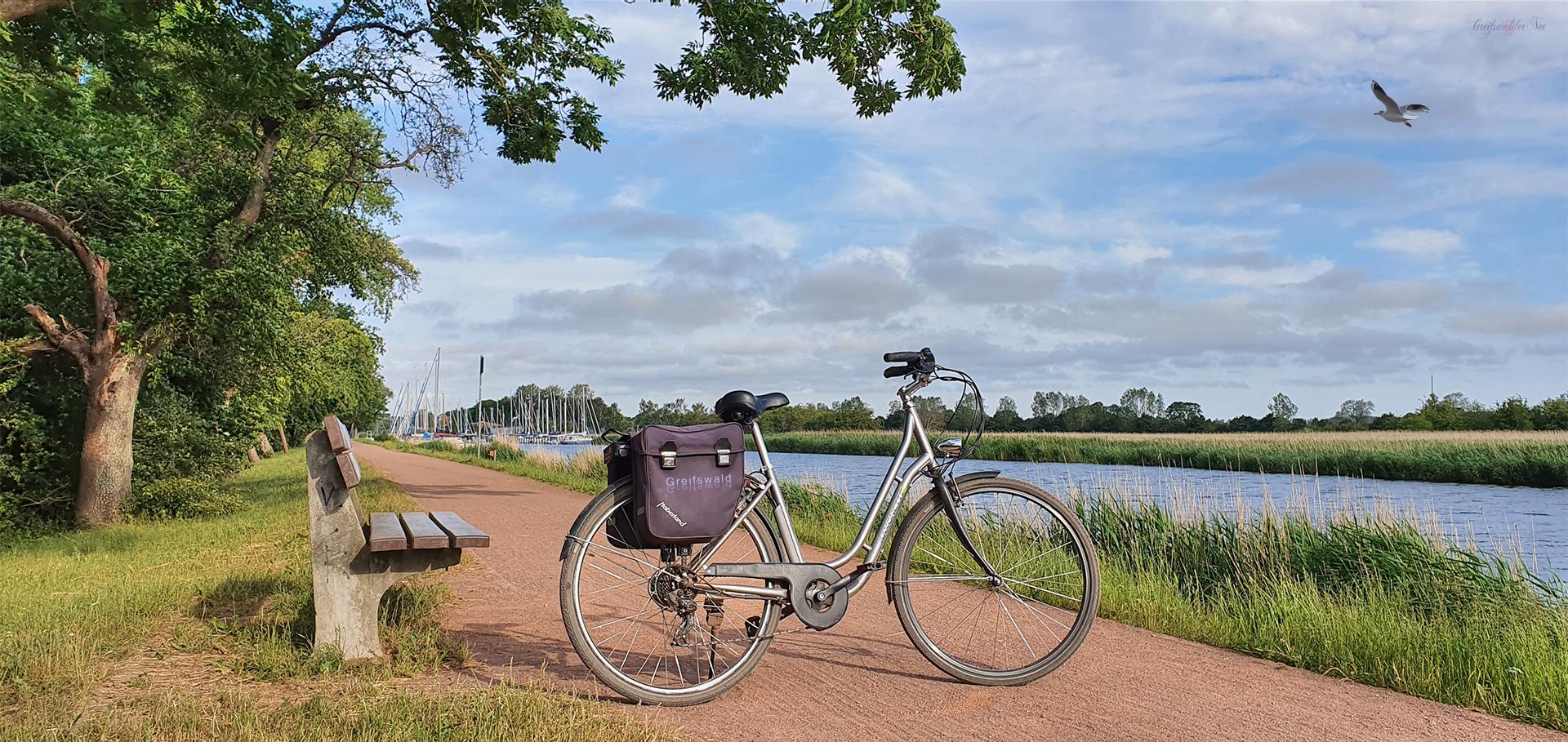 Fahrradtour auf dem Treidelpfad am Ryck in Greifswald