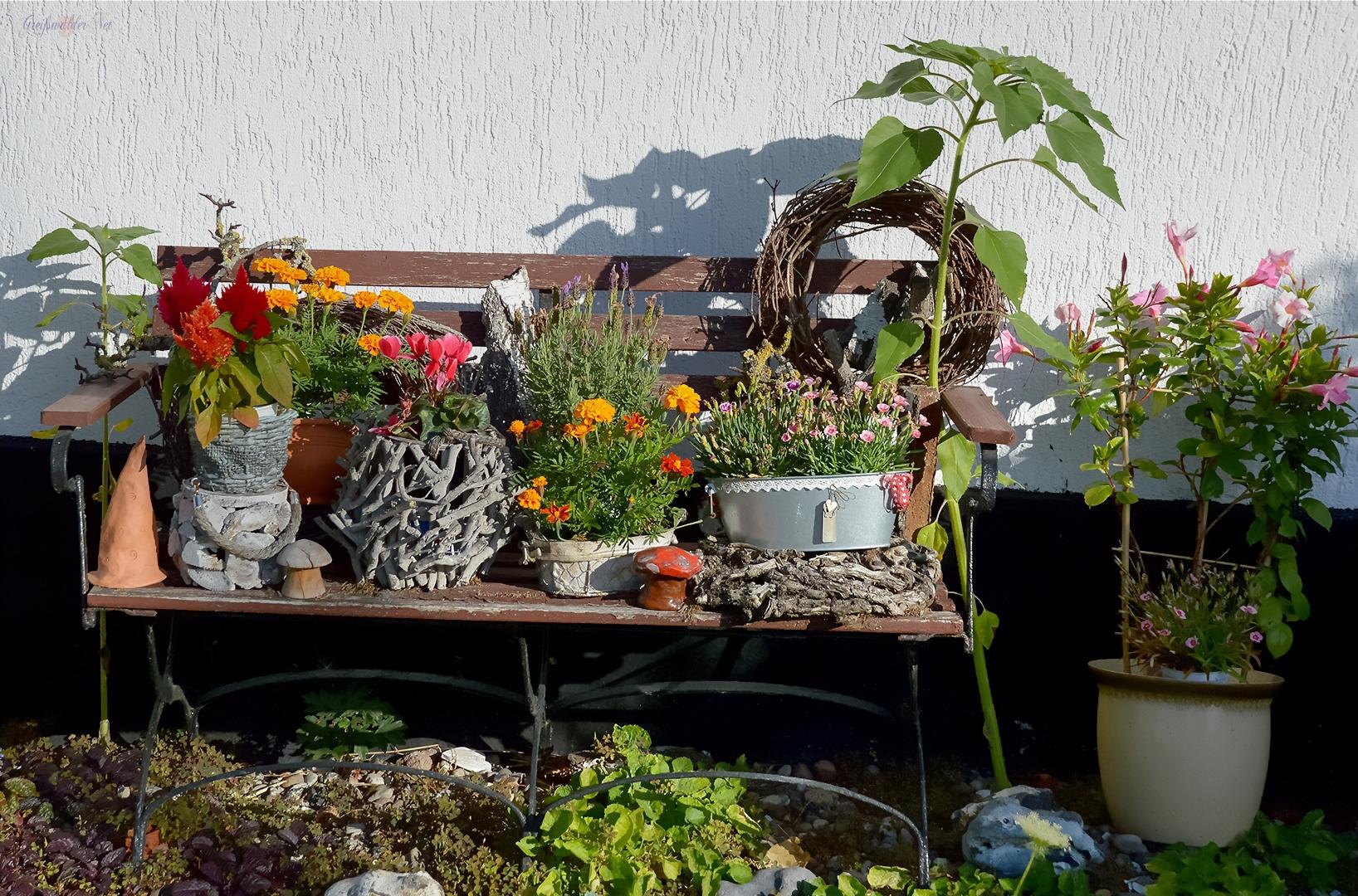 Sommerdekoration in einem Vorgarten in Greifswald-Wieck