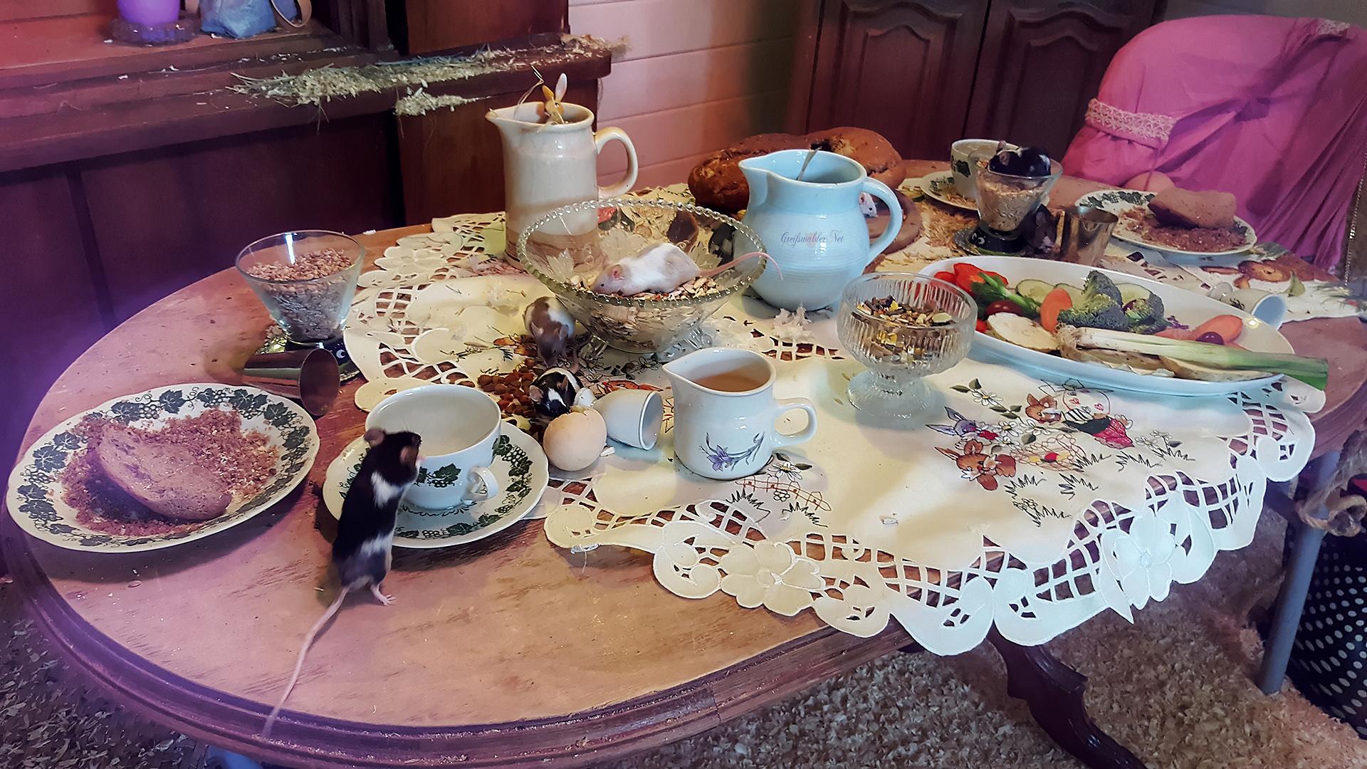 Gäste am Tisch - Gäste auf dem Tisch