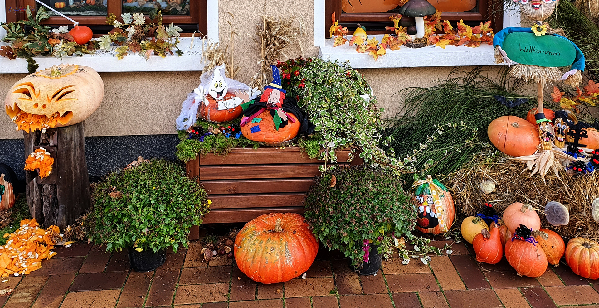 Halloween in Greifswald