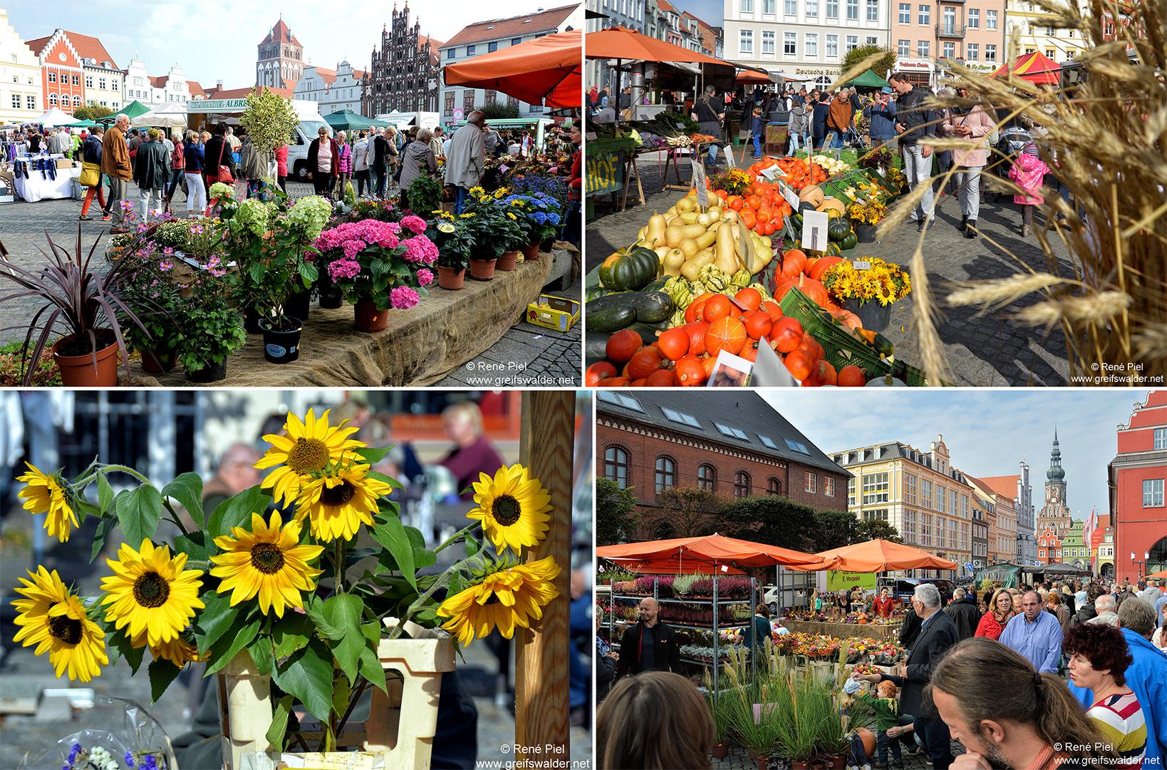 Erntedankmarkt Greifswald