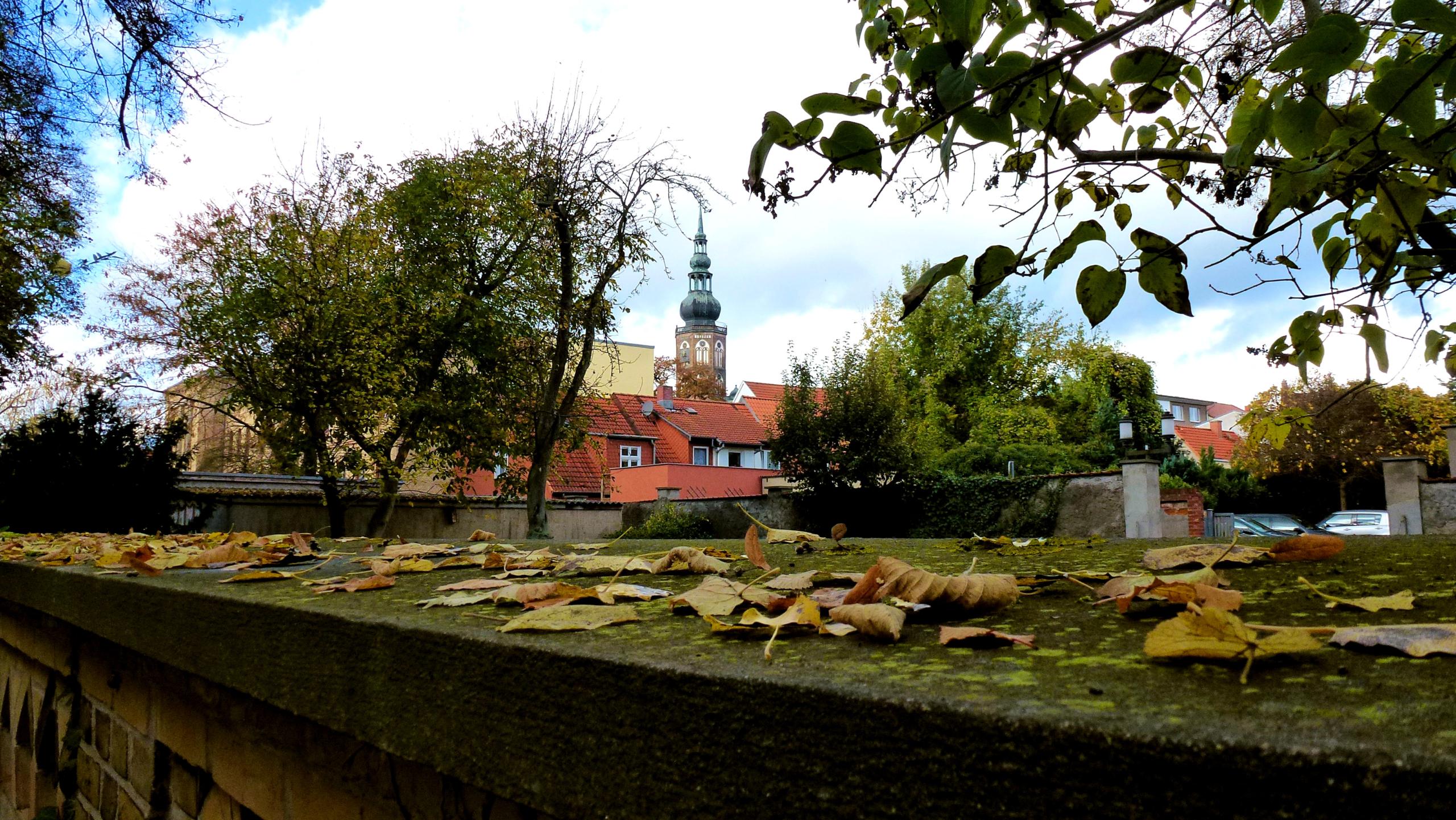 Herbst in Greifswald - Blick zum Dom St. Nikolai
