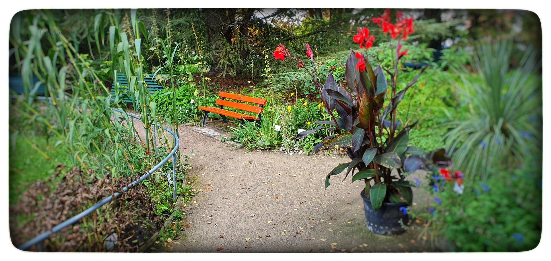 Herbststimmung im Arboretum