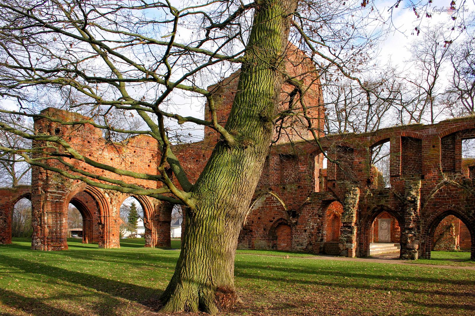 Herbst in der Klosterruine Eldena