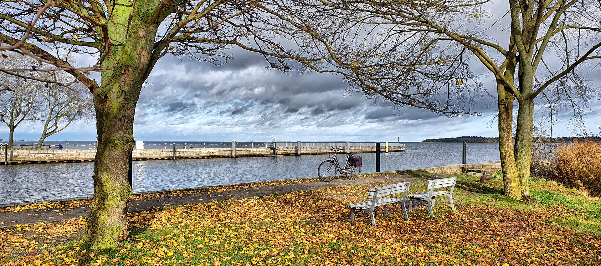 Herbstmomente in Greifswald-Wieck