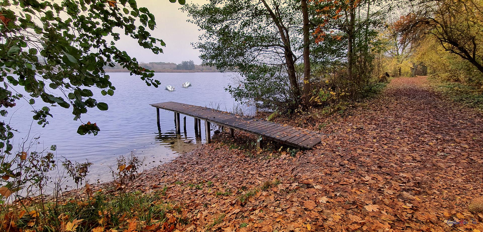Novemberwetter am See, Kosenowsee Gützkow