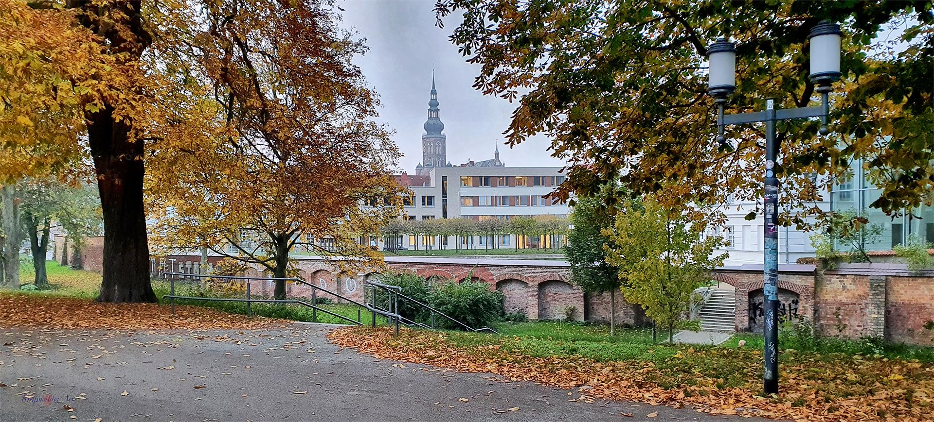 Herbststimmung auf dem Wall in Greifswald - Blick zum Dom St. Nikolai