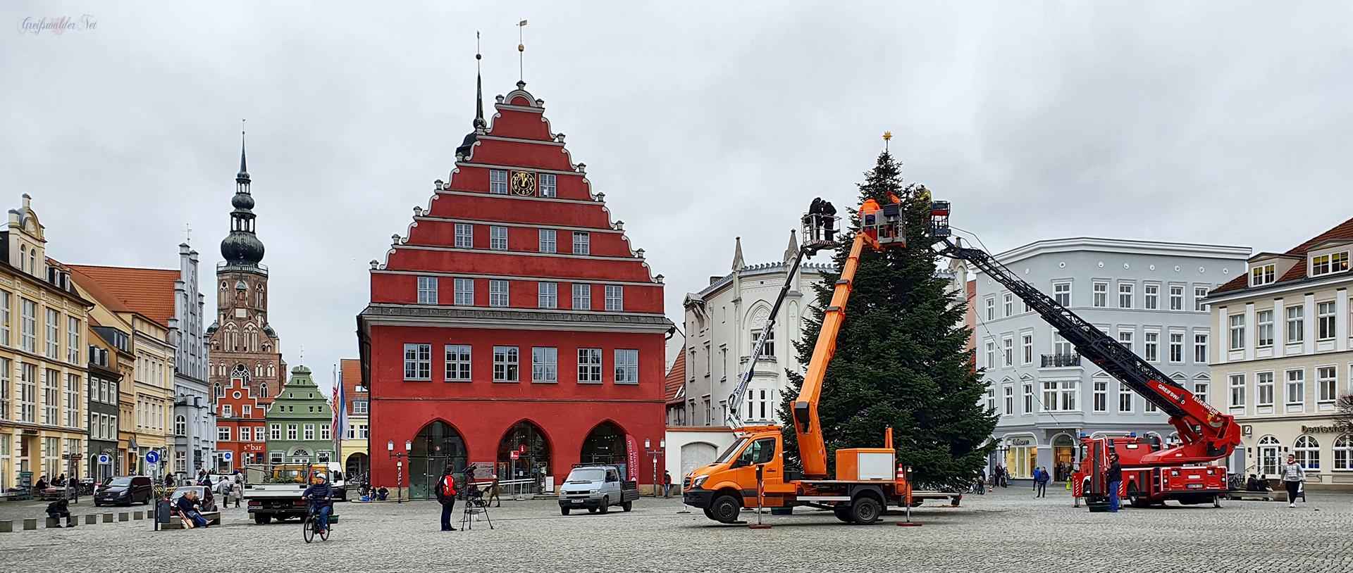 Weihnachtsbaum auf dem Marktplatz Greifswald aufgestellt. Die Weihnachtstanne ist eine kaukasische Nordmanntanne aus Züssow.