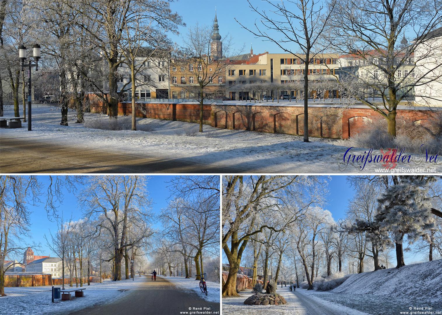 Winter auf dem Wall in Greifswald
