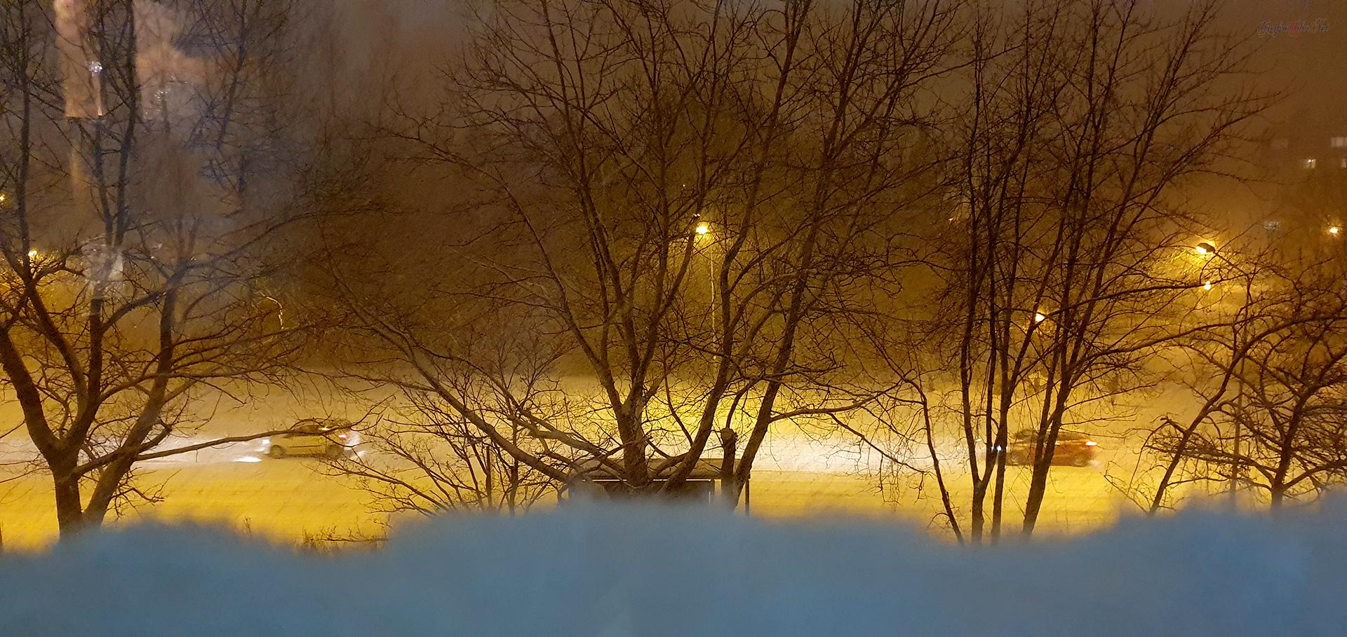 Schneegestöber in Greifswald