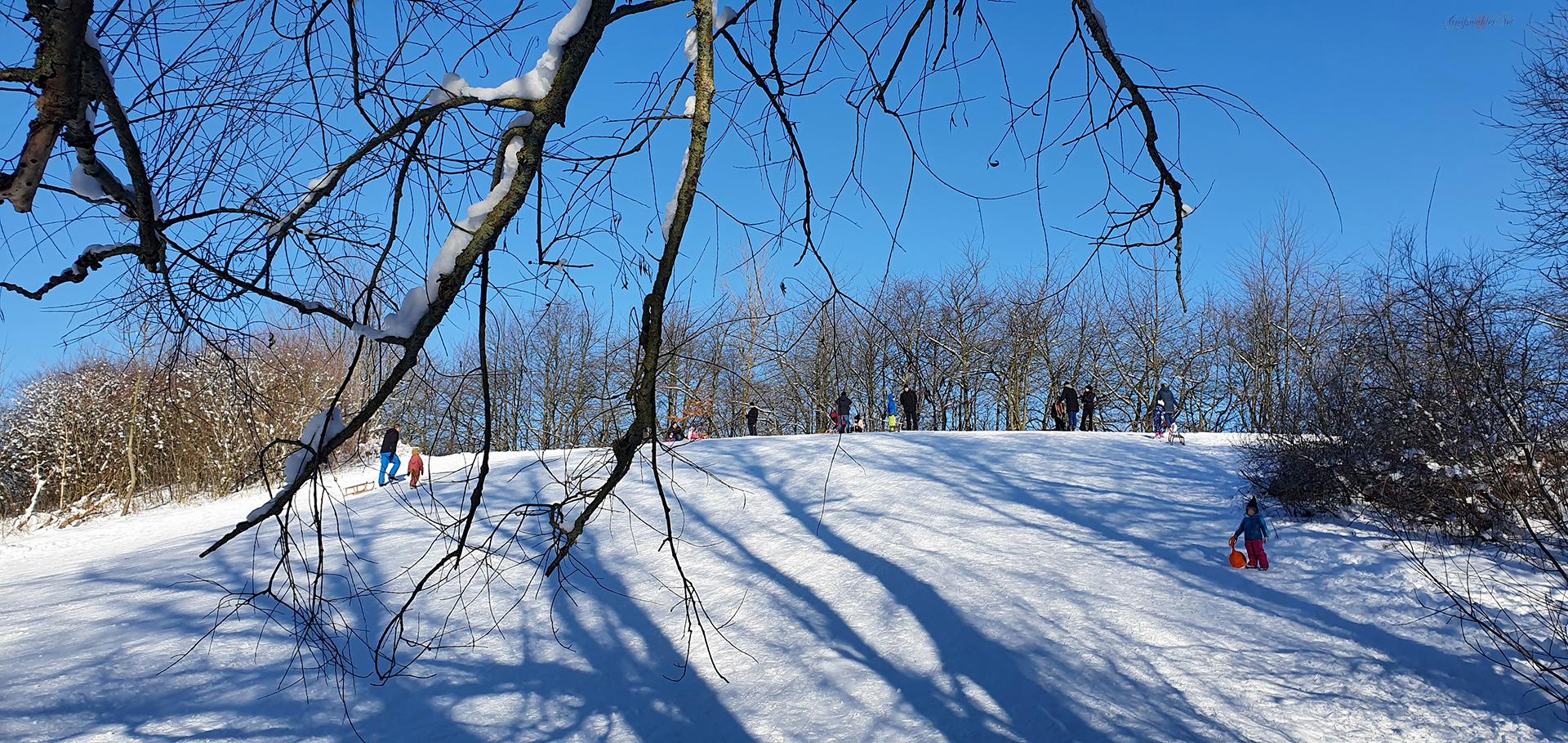 Winterspaß auf dem Rodelberg in Greifswald