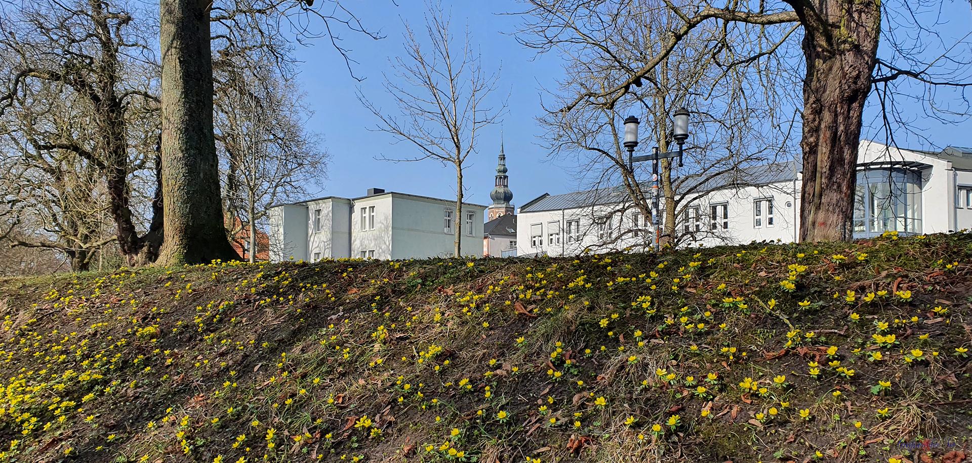 Frühlingswetter in Greifswald - Blick zum Dom St. Nikolai